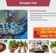 Seafood - Qua Ngon Restaurant
