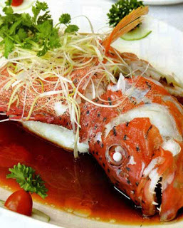 Red grouper seafood
