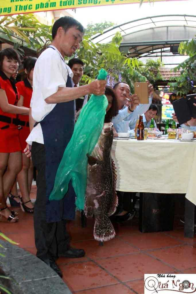 hải sản cá mú - nhà hàng hải sản tphcm