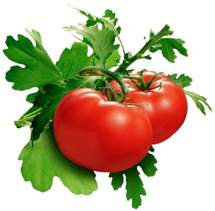 Cách xào cà chua