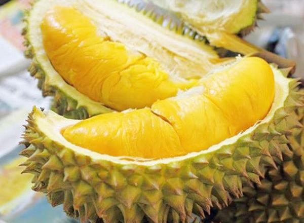 Sầu riêng là món khoái khẩu của nhiều người. Tuy nhiên, nếu ăn quá nhiều sầu riêng sẽ gây nóng trong người, gây các bệnh không tốt cho cơ thể.